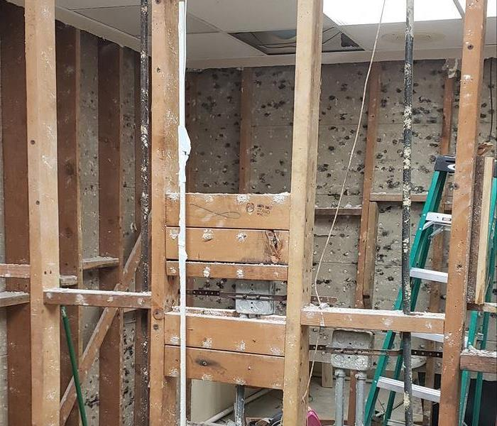 Commercial Mold Remediation Experts in San Diego