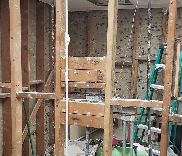 Mold Remediation Commercial Mold Remediation Expert in San Diego