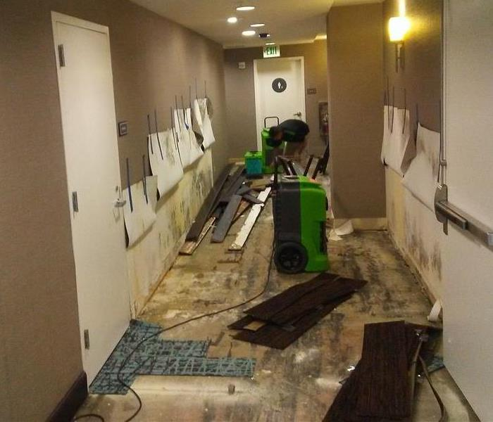 Commercial Commercial Water Damage Company San Diego, CA
